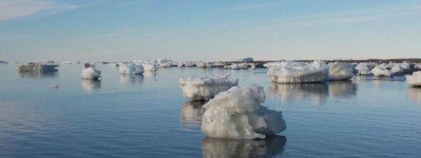 Sibilla Antartida 3 e1620056812648